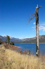 Vallecito Lake #3