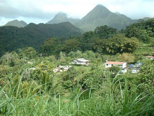 Vallée de Balata - Martinique - Stage Plongée 2007 Saint Pierre