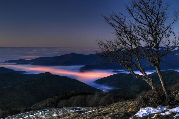 Vallée de la Thur sous le brouillard