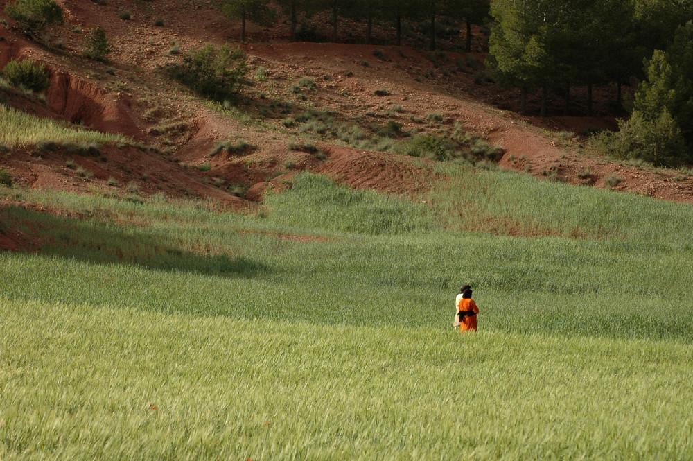vallée de l'Asni .Maroc