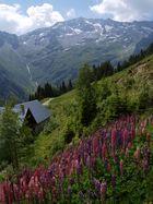 vallée du haut breda