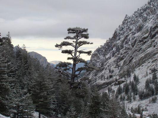 Vallée enneigée en Corse