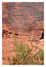 [valley of fire] - II ... petroglyphs