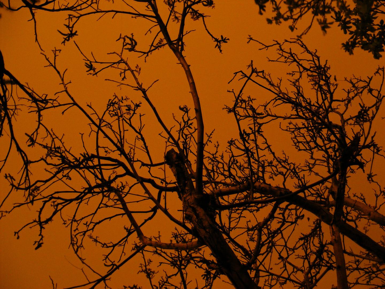 Valparaiso Noche extraña