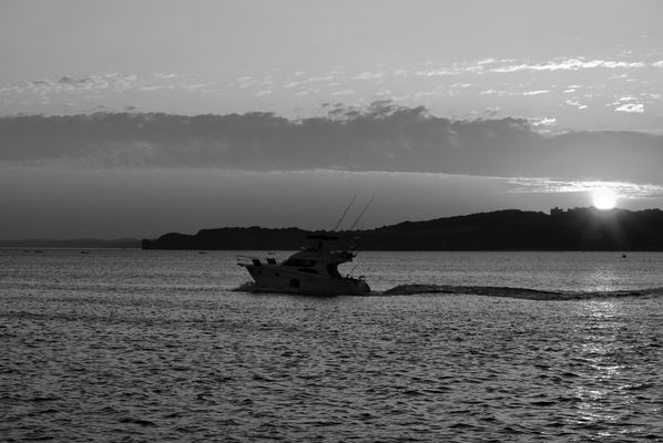 Vamos de pesca
