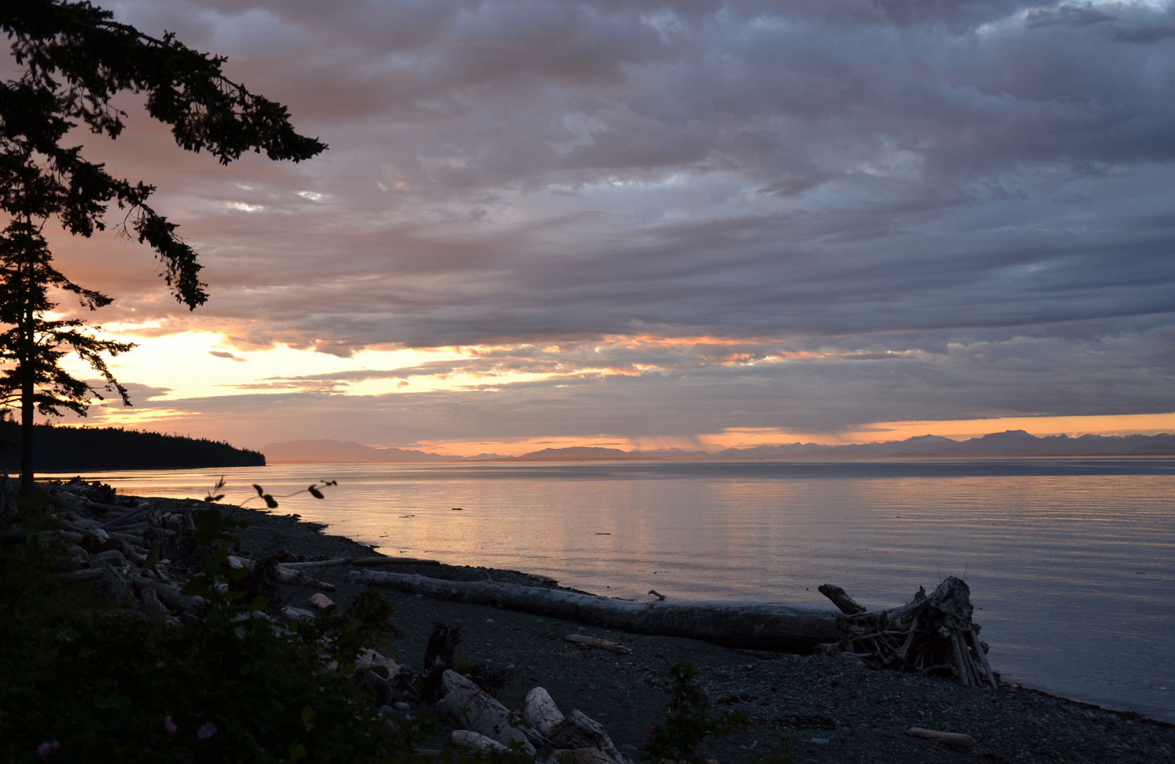 Vancouver Island - Kitty Coleman PP.