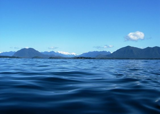 Vancouver Island (Whale route)
