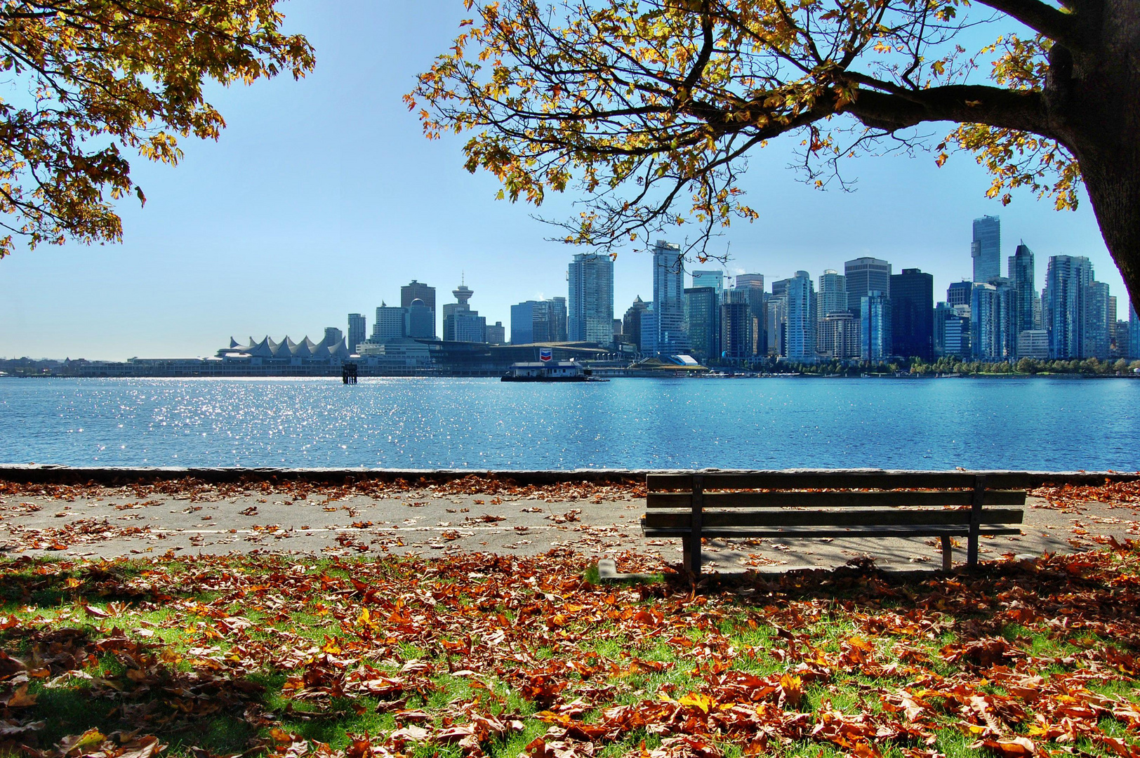 Vancouver Skyline - View from Stanley Park - 2010