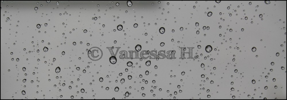 Vanessa H. Photography