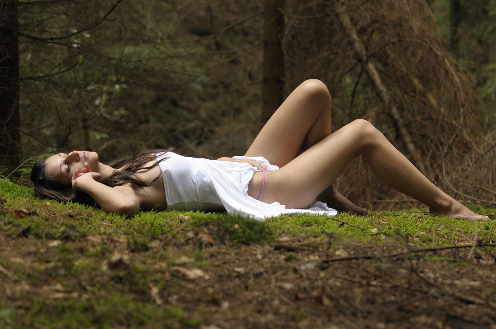 Erotik Im Wald