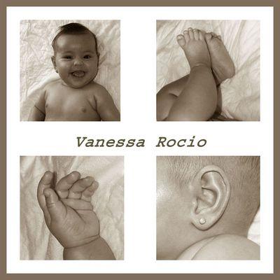 Vanessa Rocio