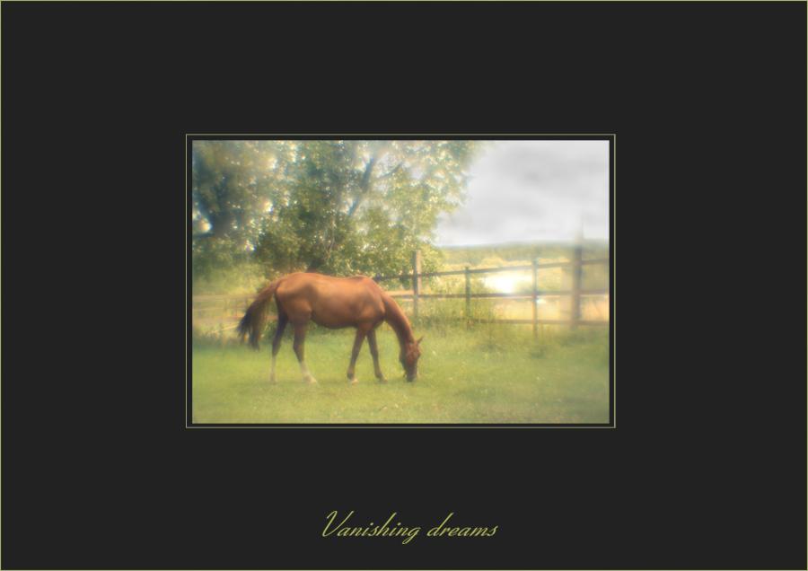 vanishing dreams 1