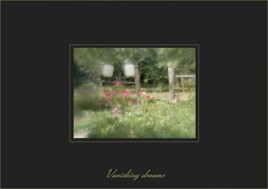 Vanishing dreams 2