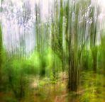 variaciones de fuga en el bosque II
