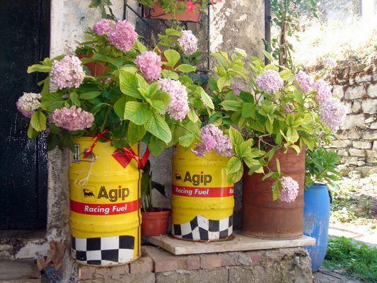 Vasi per fiori davvero singolari