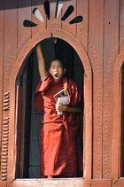 ¡vaya rollo! (Myanmar)