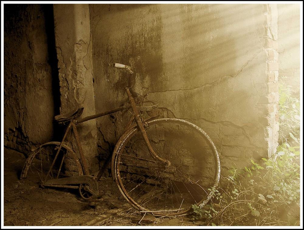 Vecchia bicicletta...............