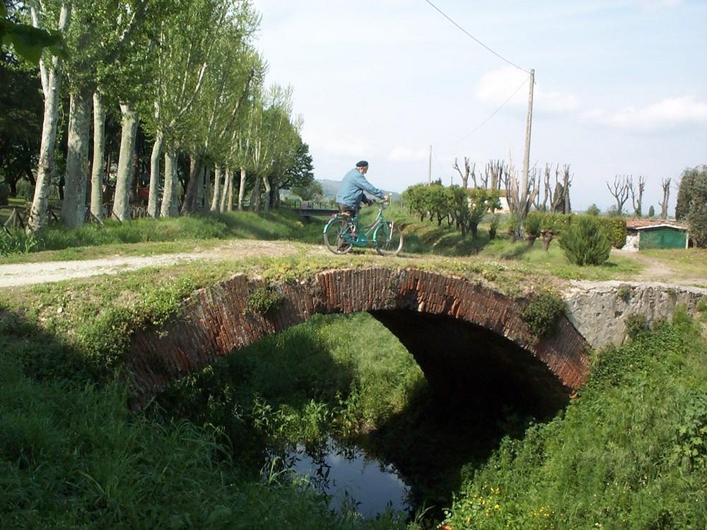 vecchio ponte a Vicopisano