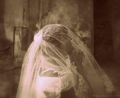 """""""Veiled Lady ..."""""""