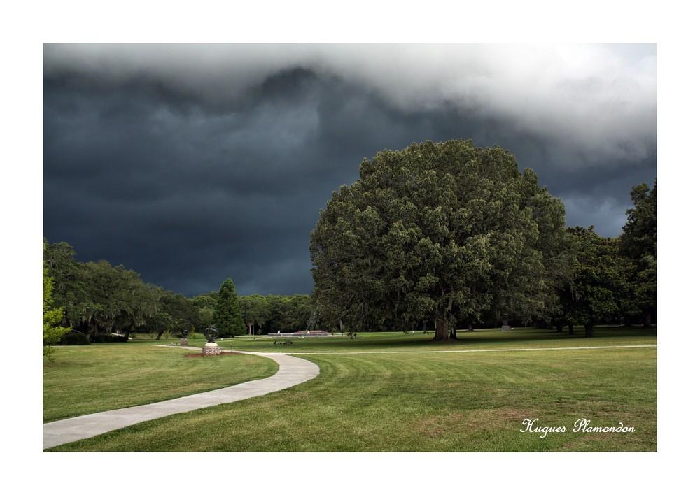 Veille d'orage à Brookgreen Gardens