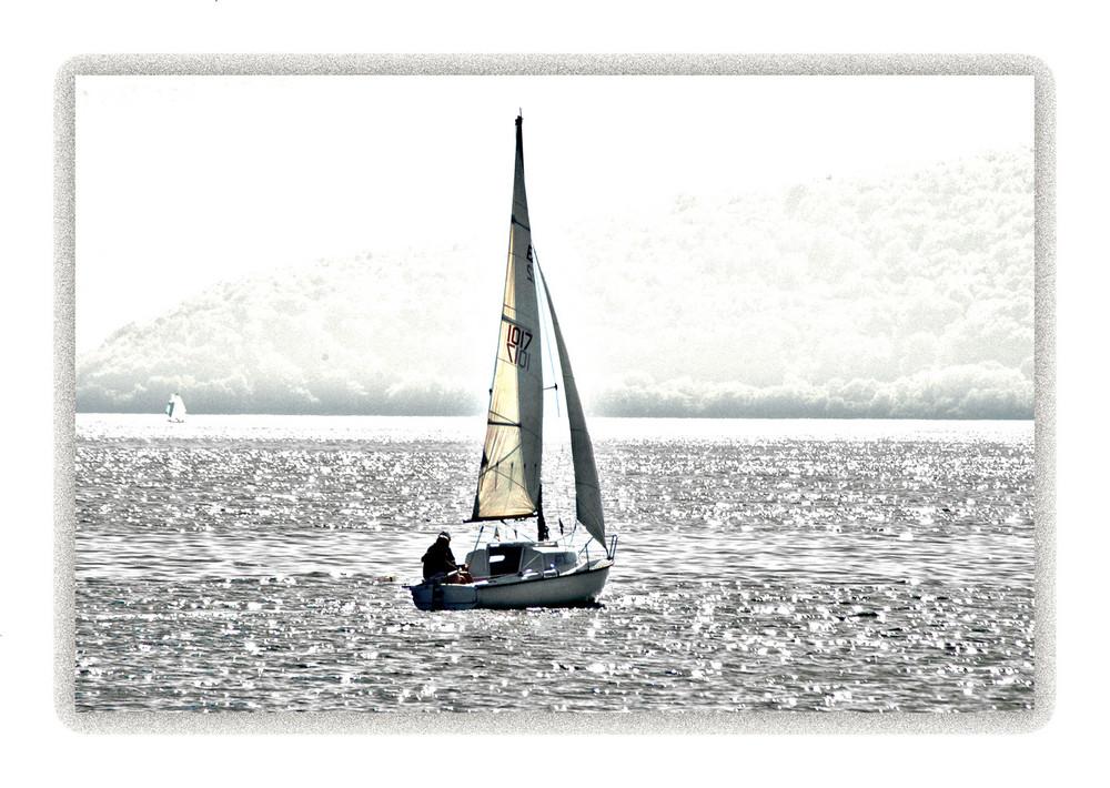 veleggiando nell'argento