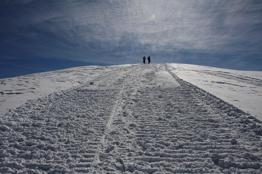 Velika planina X