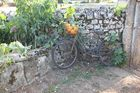 vélo du tour de france!!