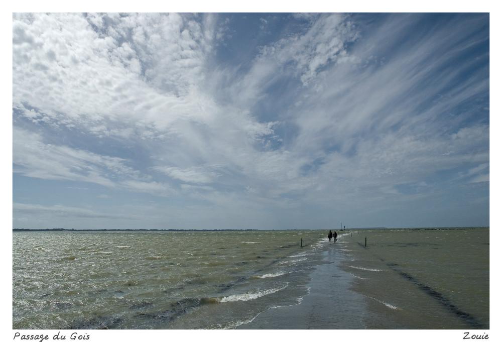 Vendée, le passage du Gois