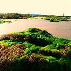 Vendée Sea