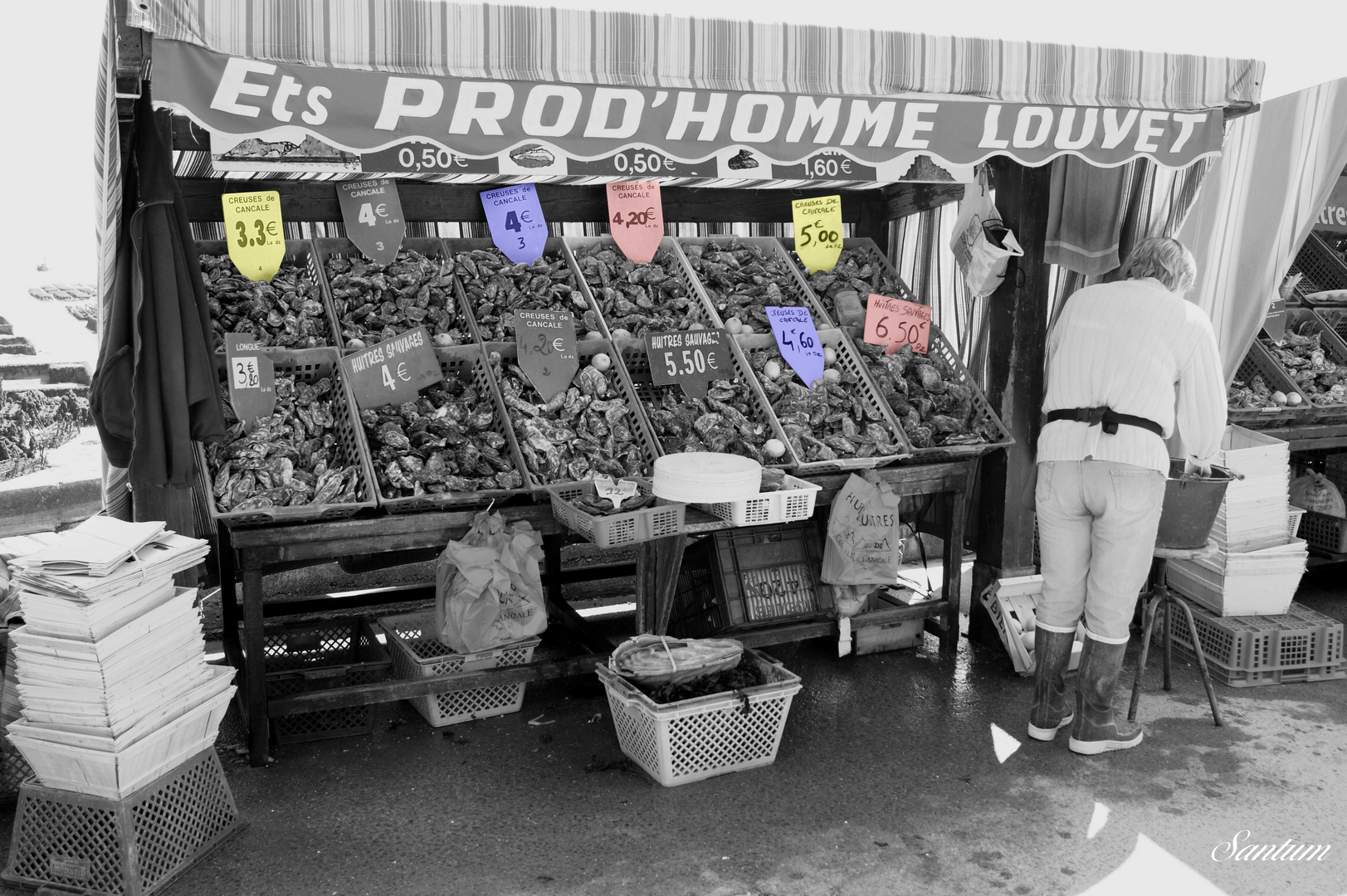 Vendeuse d huîtres