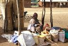 Venditrice di farine