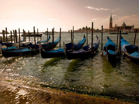 Venecia. Gondolas. al fondo S. Giorgio maiore