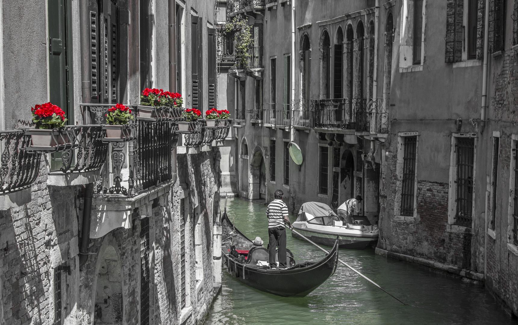 Venedig - Gondoliere