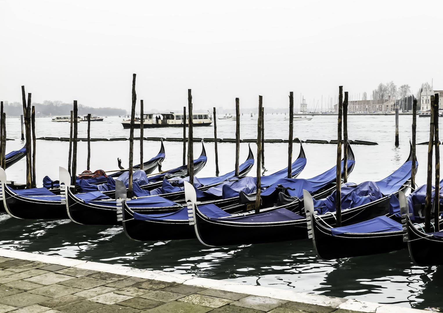 Venedig offseason