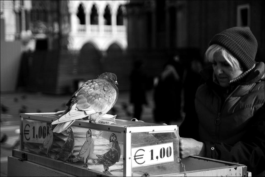 Venedigs Gesichter #2