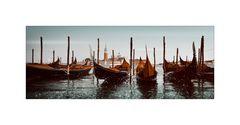 * Venezia - bicolour *