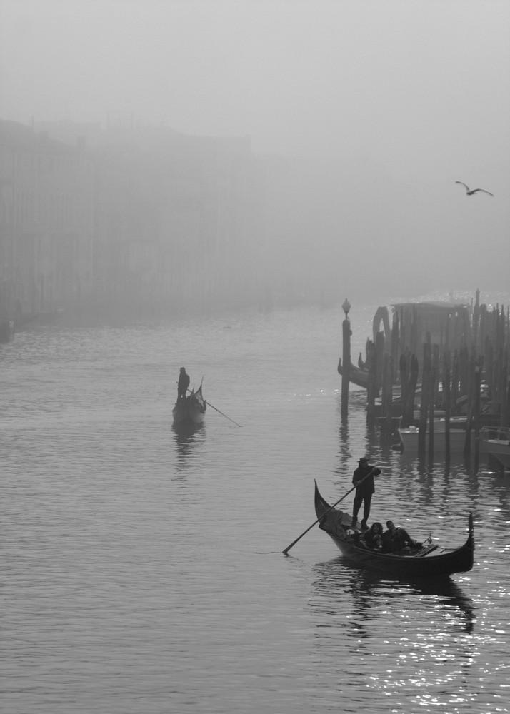 Venezia col caigo