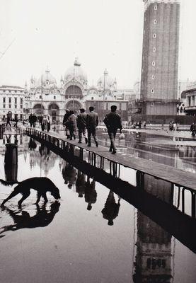 Venezia ott.1996