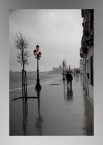 Venezia - walking in the rain...