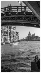 Venice - Accademia