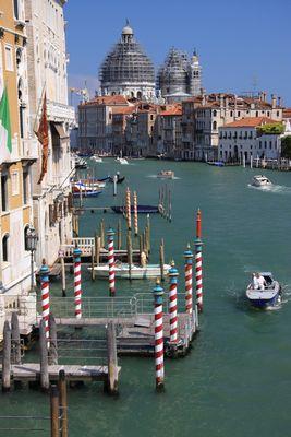 Venice alive