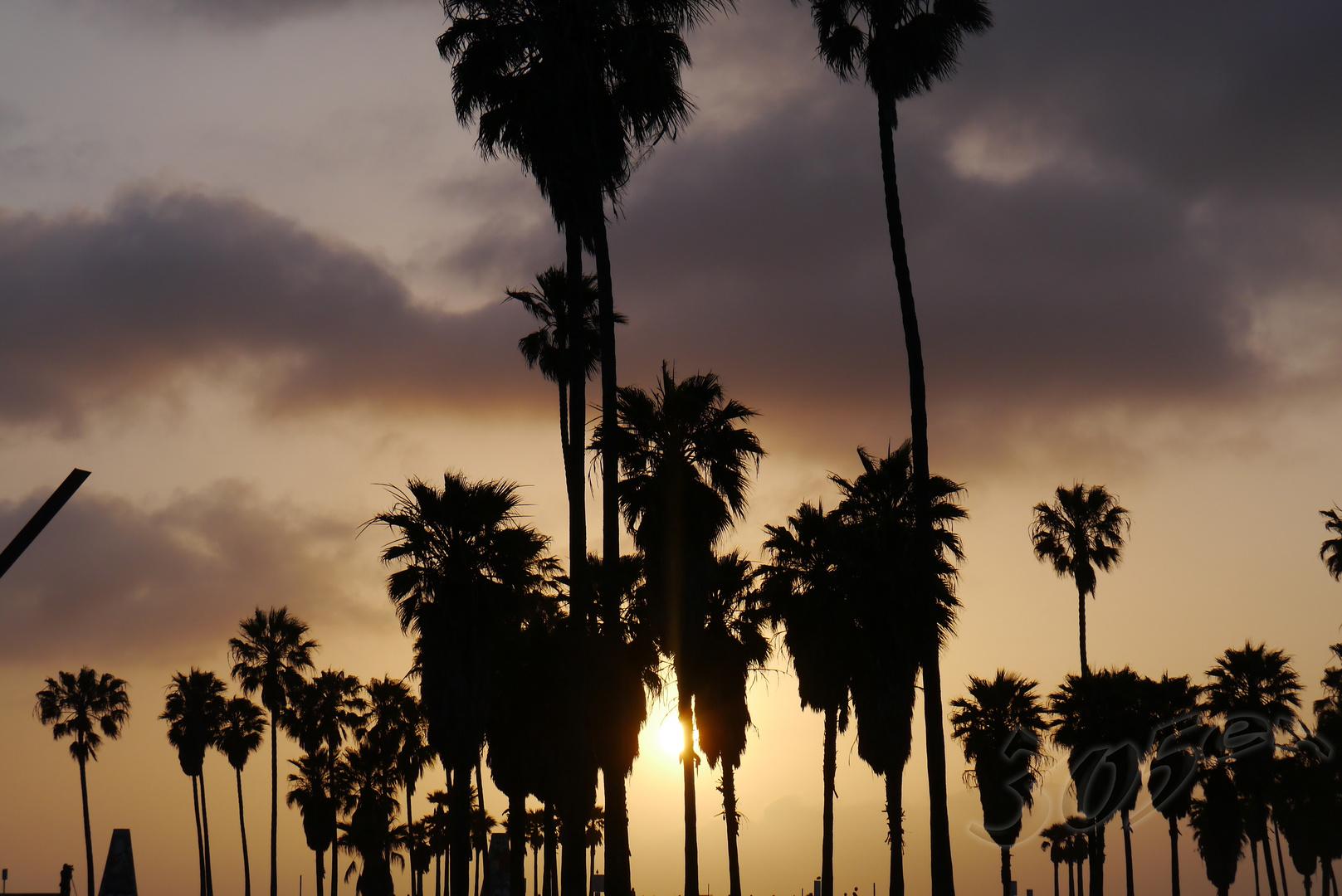 Venice Beach Teil 2