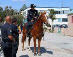 Venice Cops