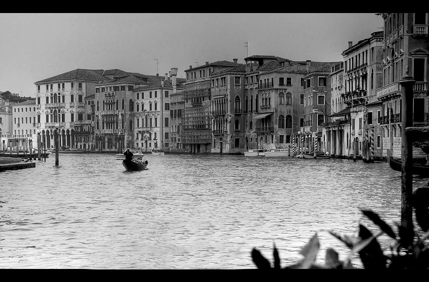 Venice II.1