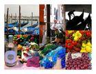 Venise, tu es à croquer.