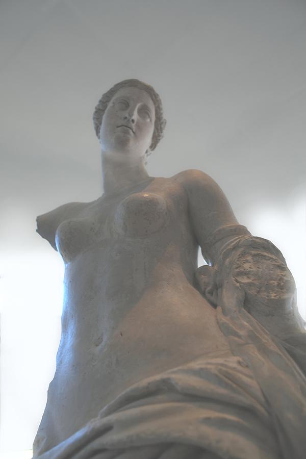 Vénus dans la lumière