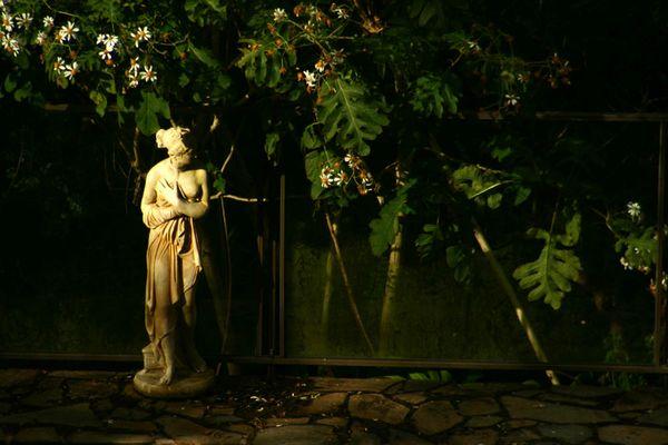 Venus im Garten