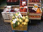 Verbotene Früchte