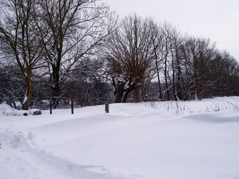 verdammt viel Schnee...