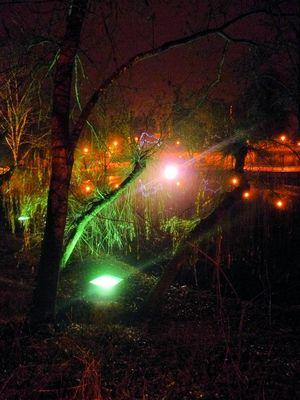 Verdure de nuit